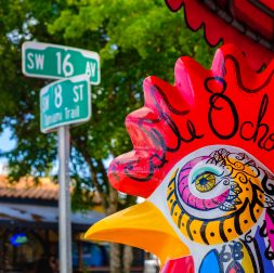Learn Spanish Miami Food Tour