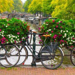 Weekend in Amsterdam Guide