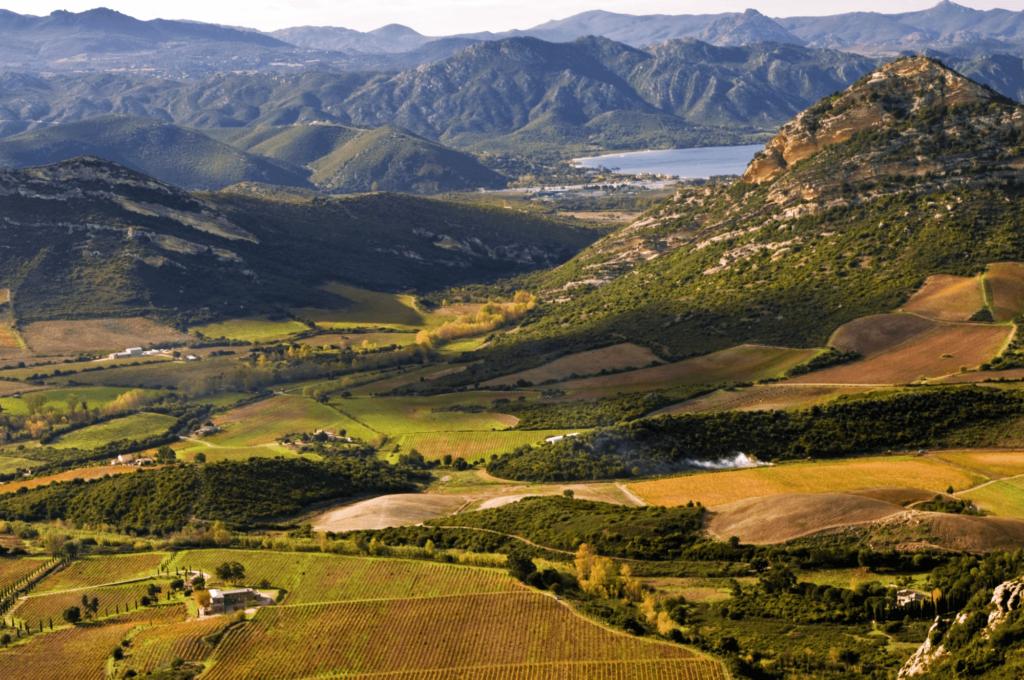 French Wine Regions - Corse (Corsica)