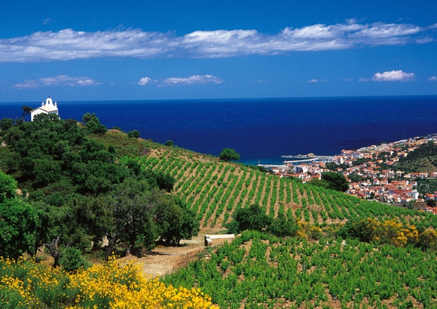 Languedoc Roussillon Wine Region France