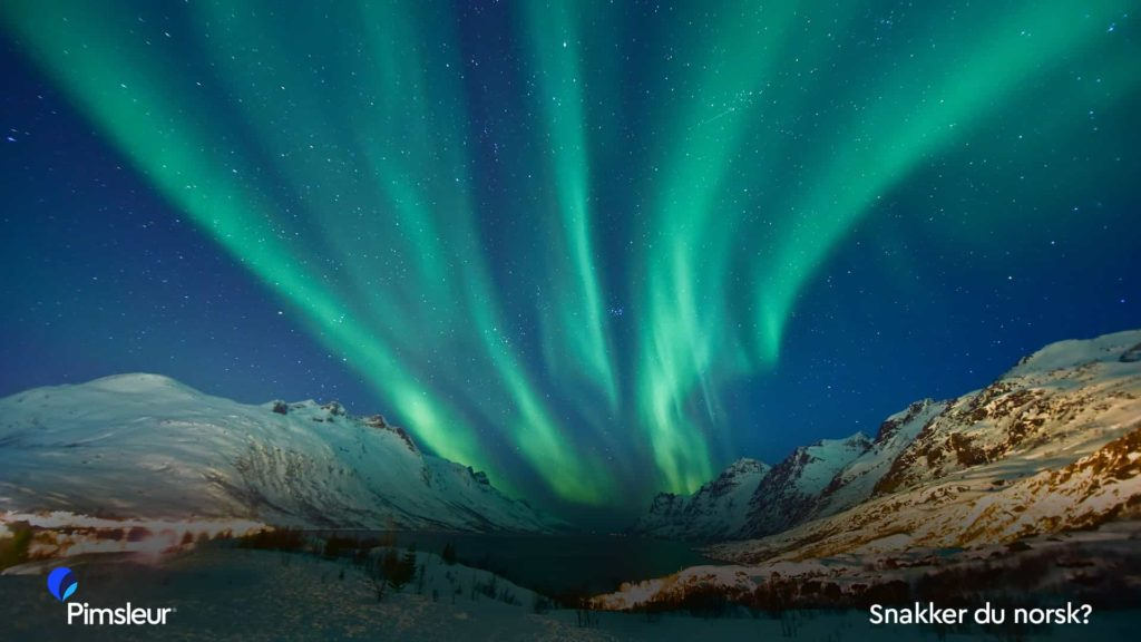 Zoom Background Northern Lights Norway