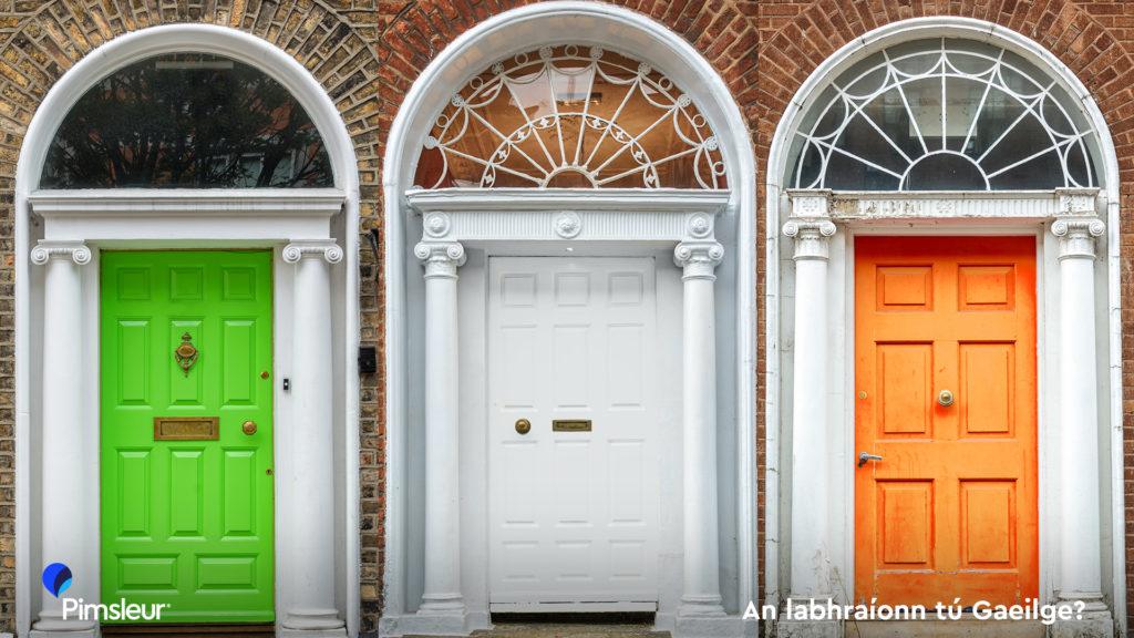St Patrick's Day Zoom Background Dublin Ireland