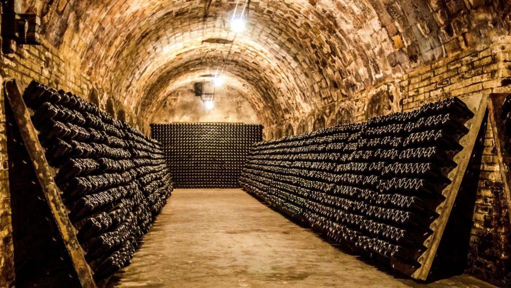 Wine cellar caves Wine tasting