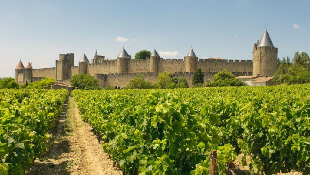 Carcassonne vineyards Languedoc Roussillon French wine region Côte-du-Rhône Loire Provence