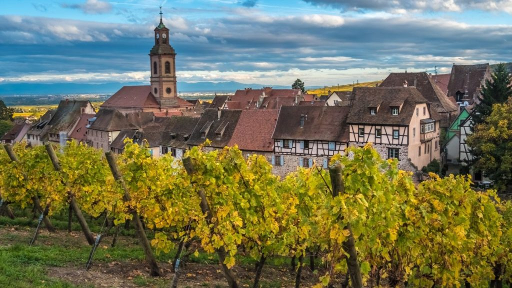 French wine region Alsace