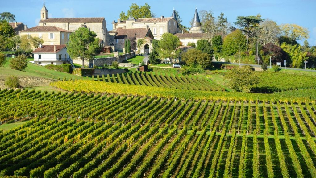 Visit a French Château or Vineyard wine tours festivals